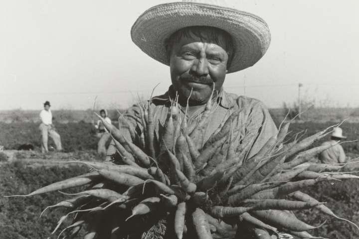 L'agricoltura 4.0 entra all'Università del Molise