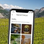 collegare wine lovers e cantine