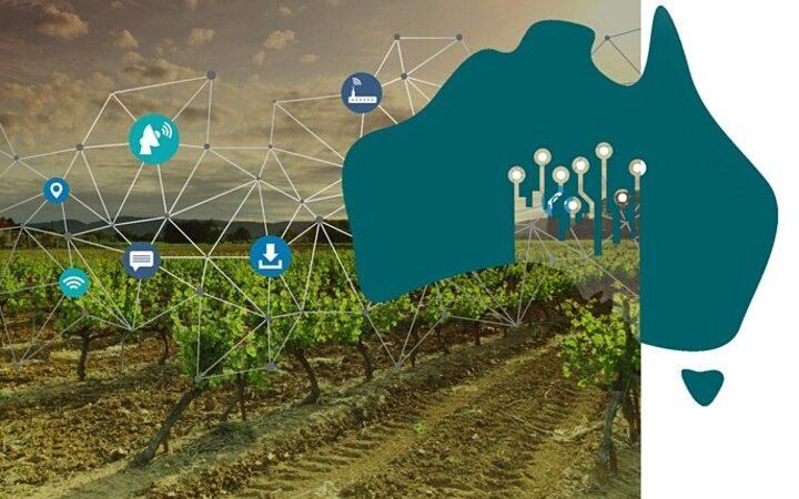 strategia digitale per il turismo del vino