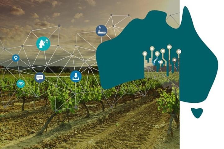 La strategia digitale per il turismo del vino in Australia